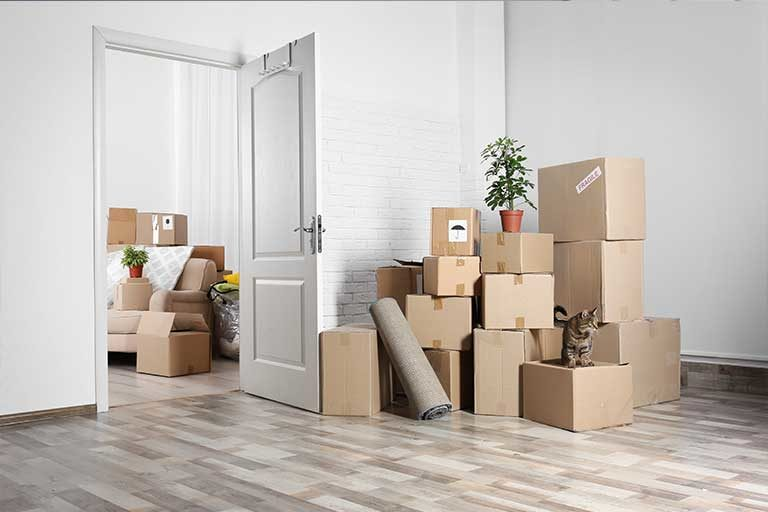 Best Local Movers NYC